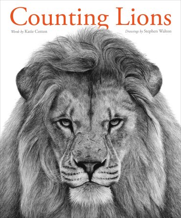 BK Counting Lions
